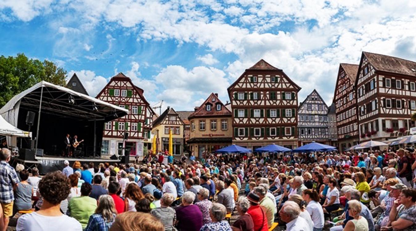 Viel Kultur - Mosbacher Sommer - Stadtwerke Mosbach unterstützen